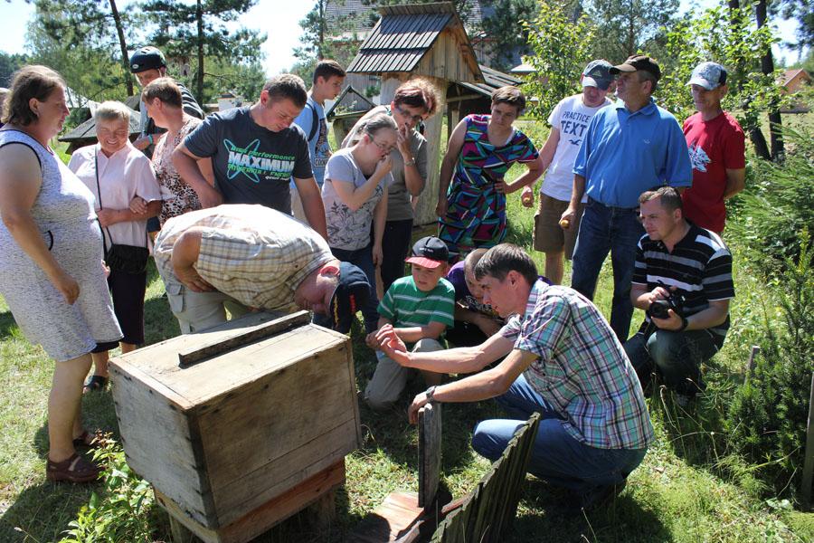 kolbuszowa-skansen-pszczoly
