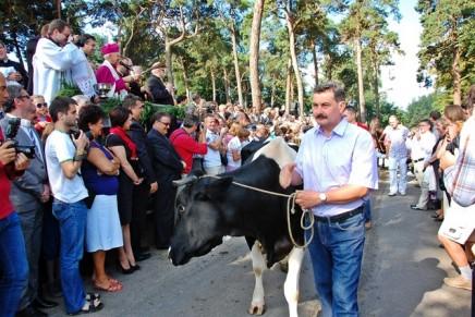 Tradycyjne święcenie zwierząt ku czci św. Rocha – w czwartek w Mikstacie