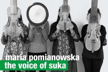 Dawne polskie instrumenty rozbrzmiały na festiwalu w Lincoln Center
