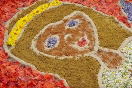 Tradycja dywanów kwiatowych i sokolnictwo – kolejna polska propozycja na Listę UNESCO